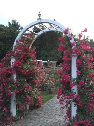 Garden_Do_Not_Use_28